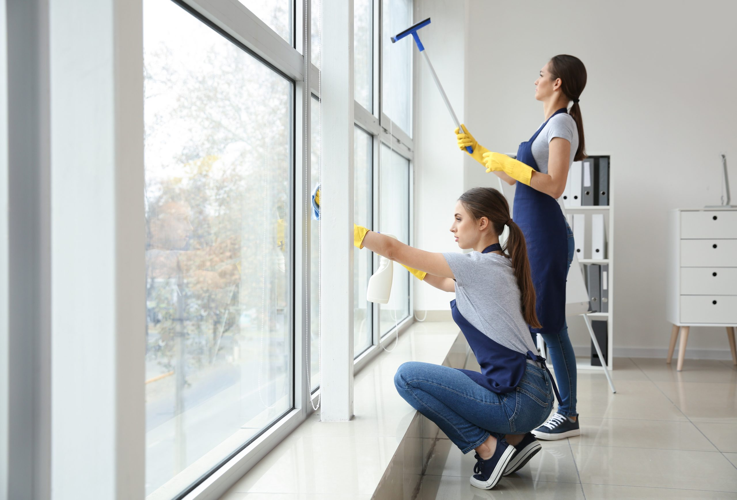 Window Cleaner in Guildford